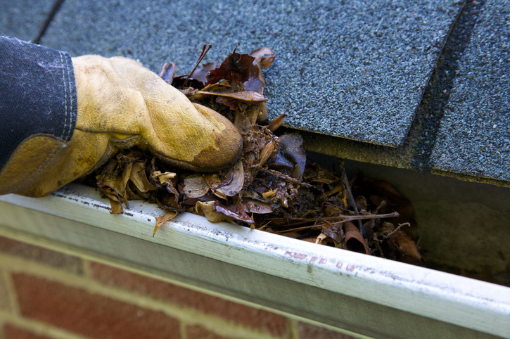 Reasons Why the Homeowners are Supposed to Hire Professional Gutter Cleaning Company